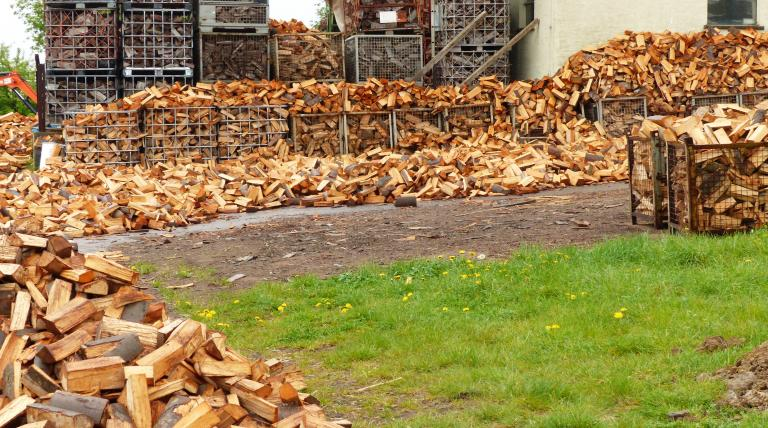Wood for fuel: not as green as it seems to be (Photo: pxhere)